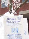 042105snowstorms